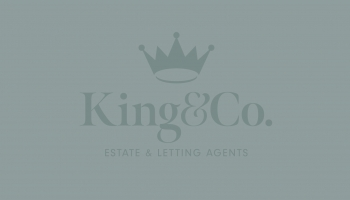Marketing Plans - King and Co
